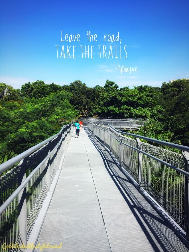 One morning walk at Alexandra Arch Singapore